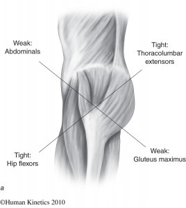 Hip Mobility: It's All in the Hip