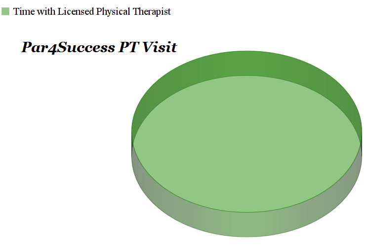 Par4Success Physical Therapist visits