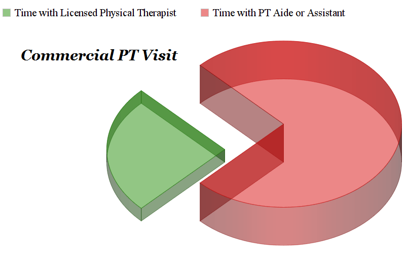 Commercial Physical Therapist visits
